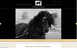 Huntington Friesians